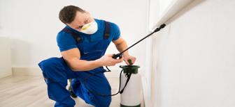 Как избавиться от запаха после обработки
